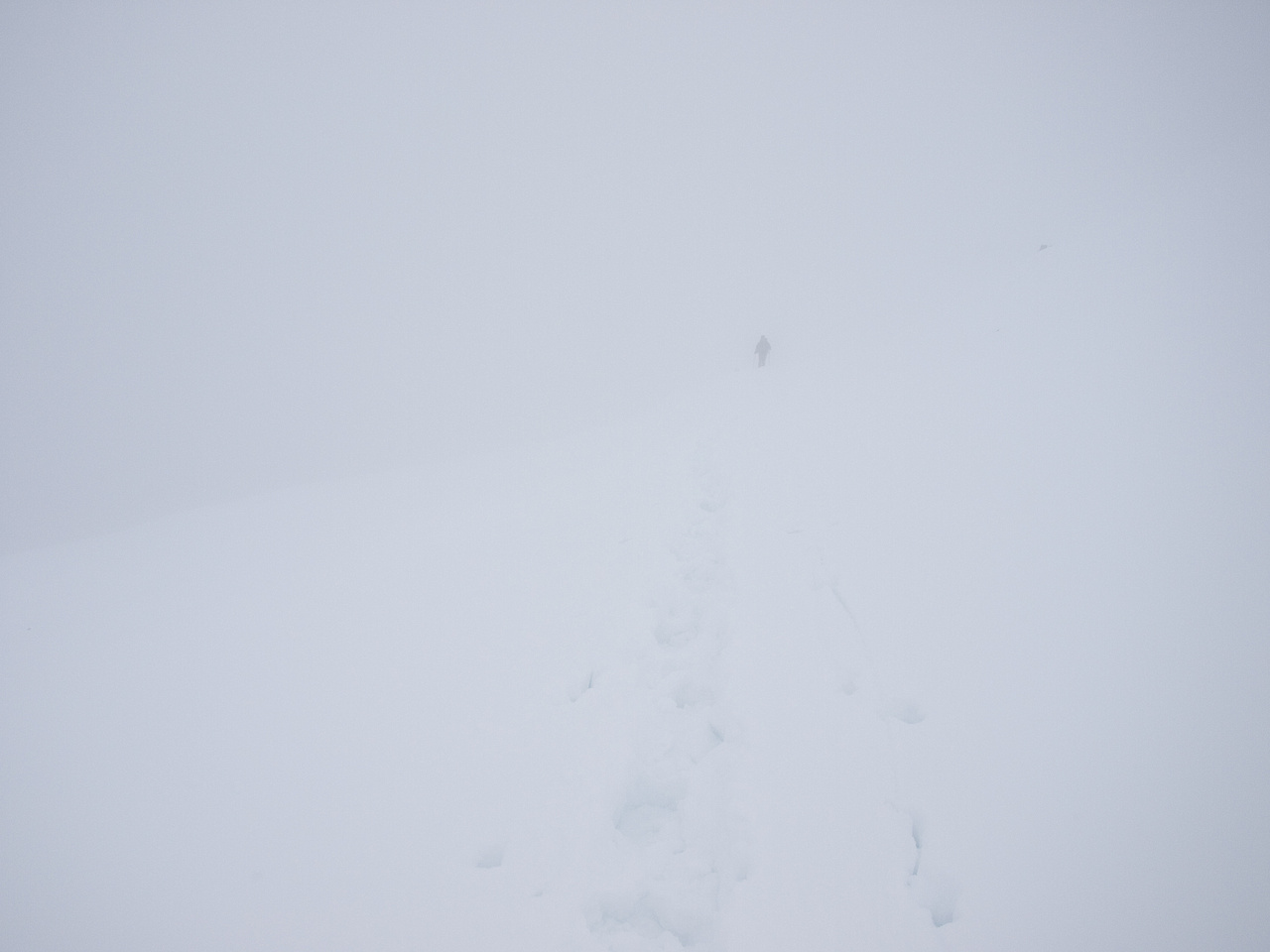 Can't see much - Wietse is just barely visible through the snow / cloud.