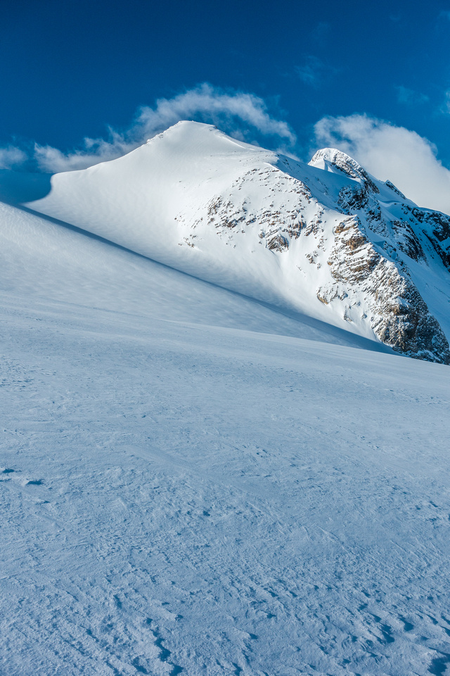 I think that Tilly (aka Little Trapper or Barrel Peak) is a peak in its own right. Small - but still a peak!