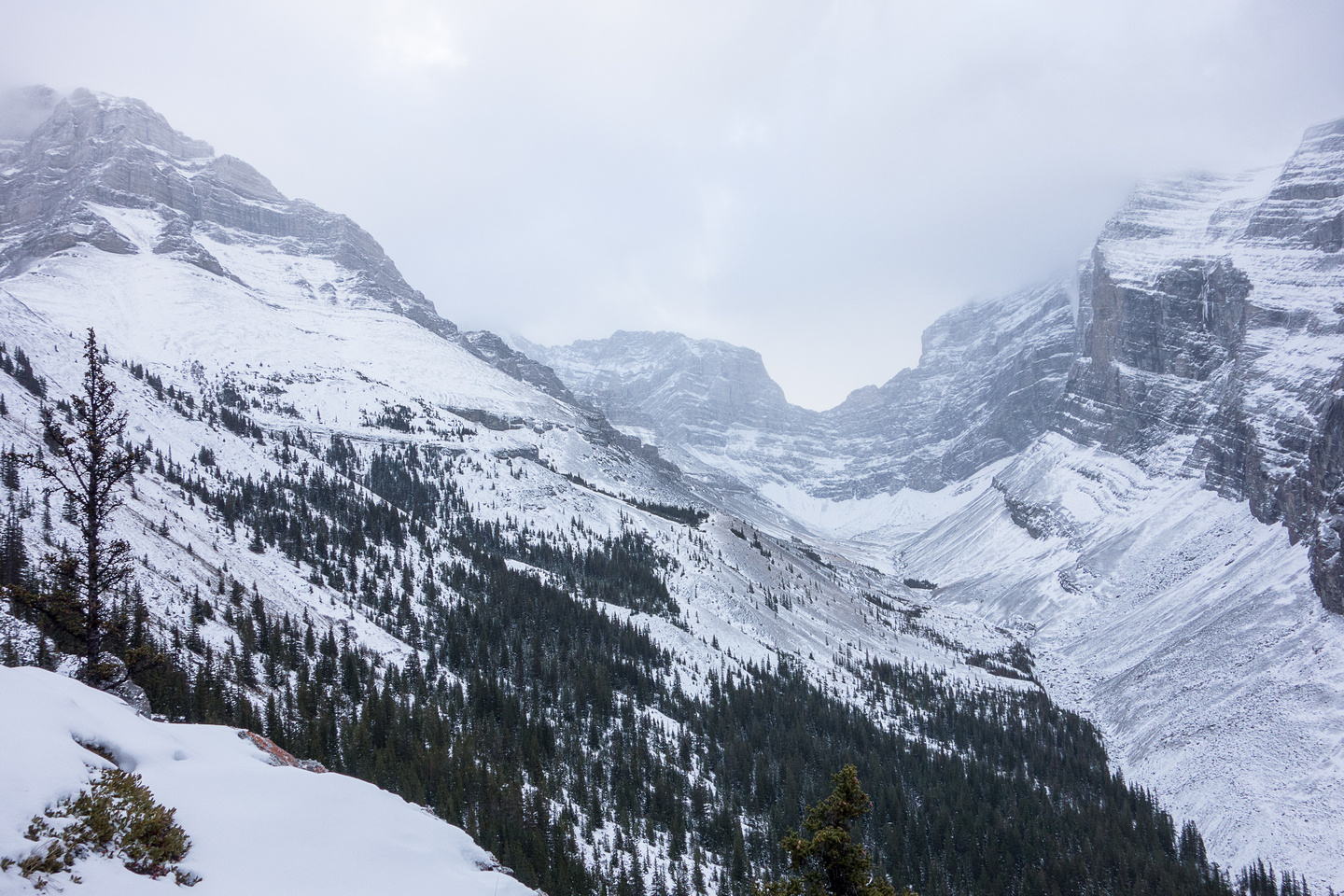 A view into the pristine Spencer Creek Valley which grants access to both Lougheed II and III.
