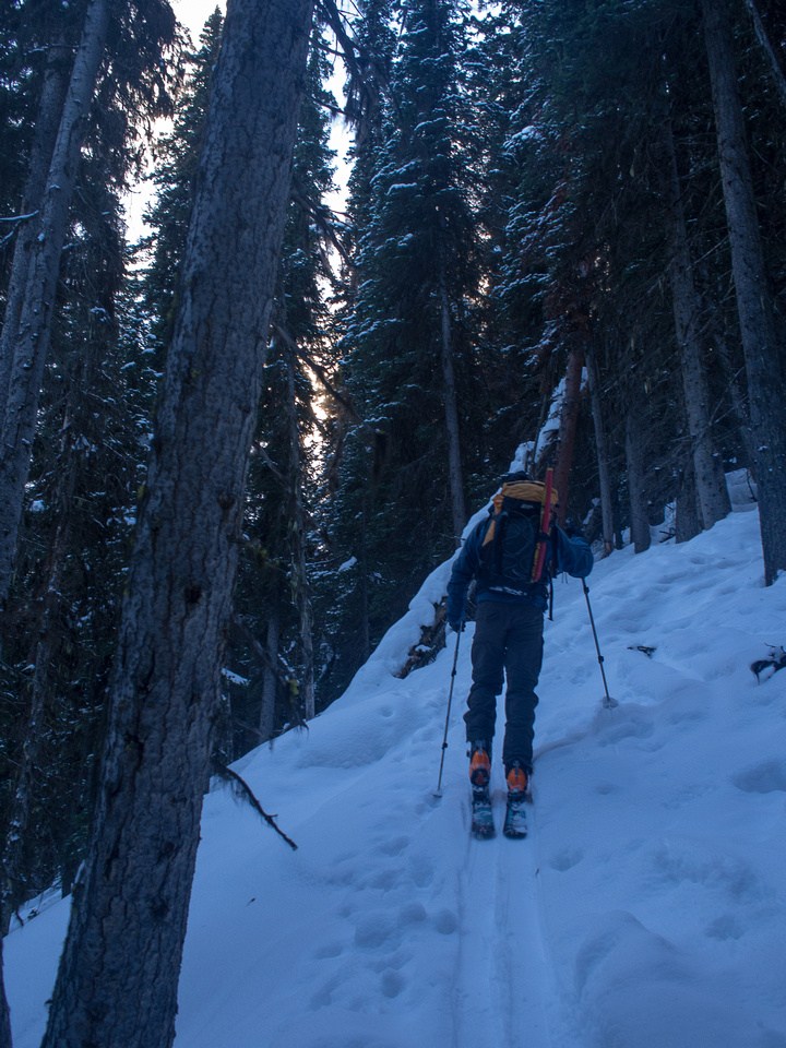 I wasn't looking forward to the descent through tight trees and crappy snow on the headwall before the lake.
