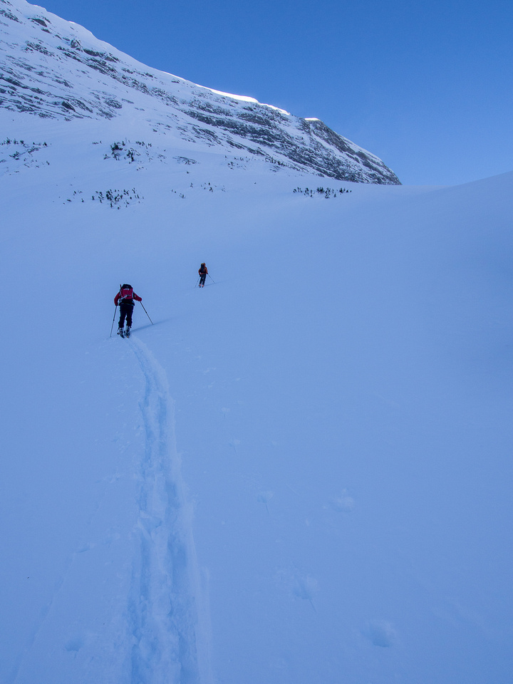 Working our way up the steep avy slope beneath the towering NE face of Birdwood.