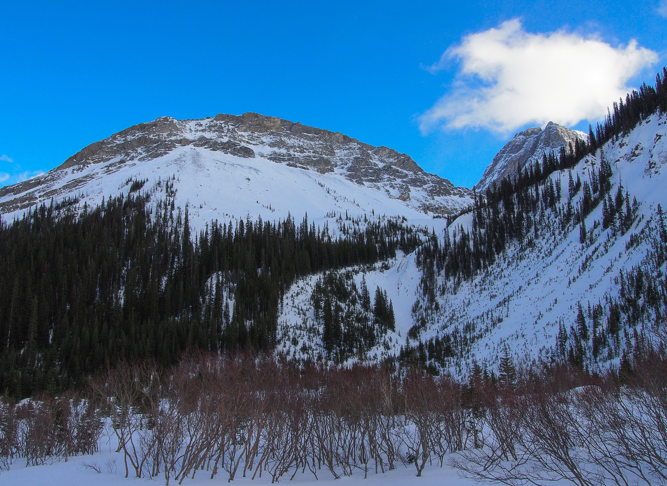 Looking up at Pig's Back and the gully we descended a week ago!
