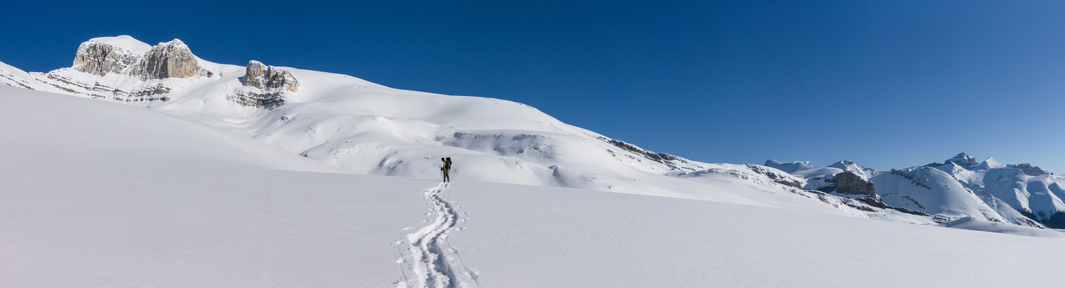 What a glorious day to be out on Wilson playing in the snow.