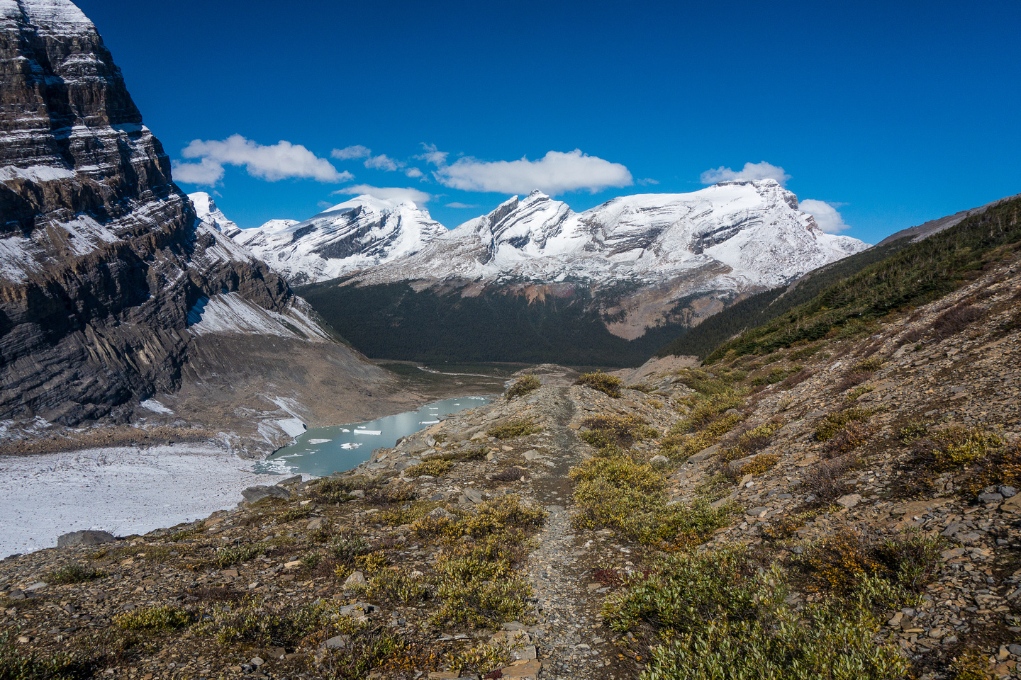 When the trail starts to climb up beside the Robson Glacier it eventually flattens a bit and you get an amazing walk high above the glacier