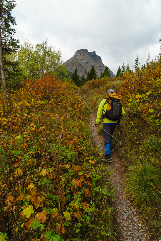 Fall colors are in full swing as we march up the easy-to-follow Lineham Lakes trail. Mount Lineham looming above us.