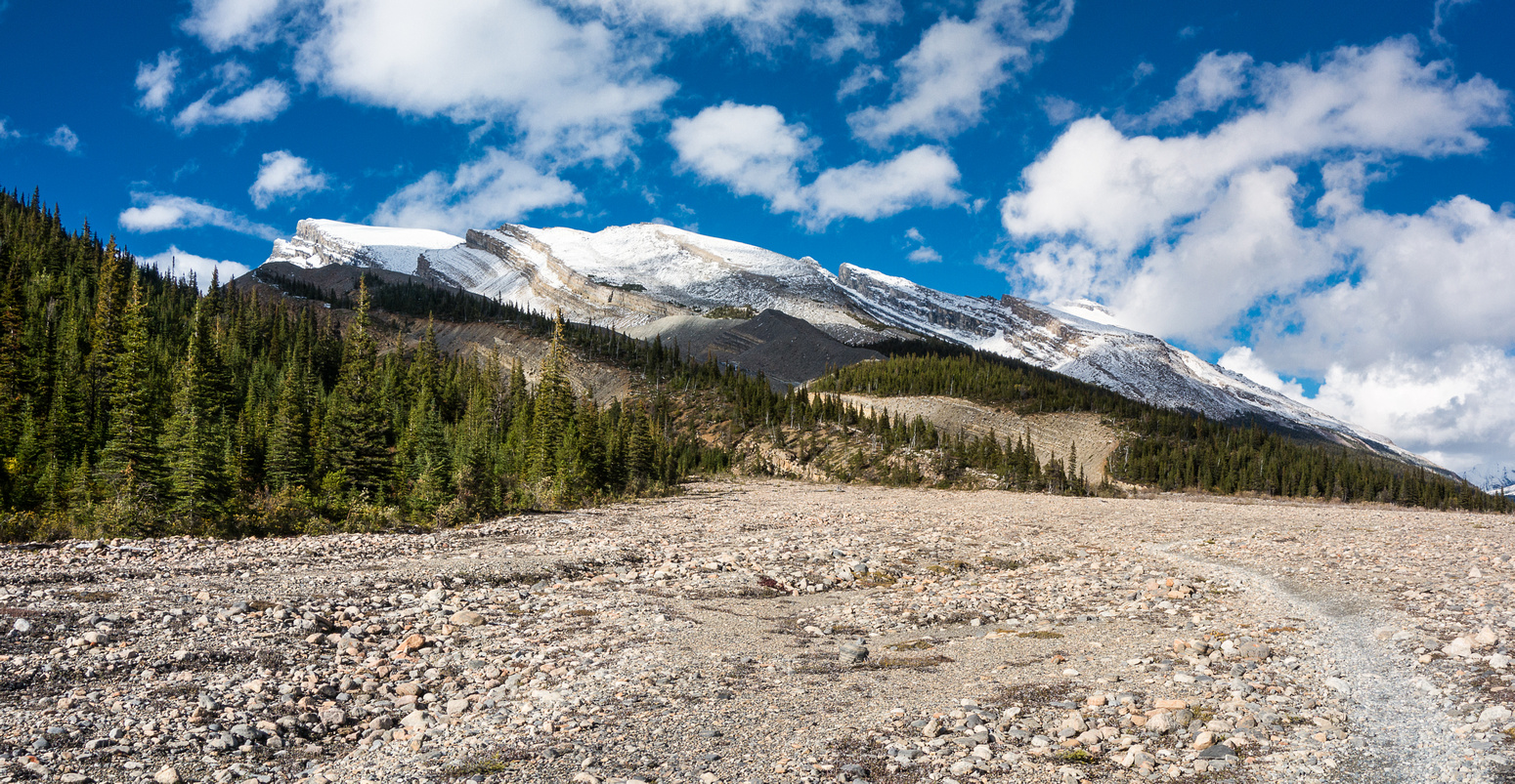 The trail opens up considerably before getting to the Marmot campground - Berg Lake is OOS to the right here.
