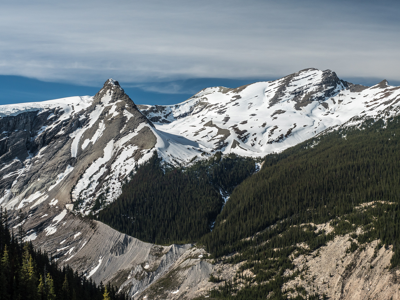 Looking across the Glacier River valley to the Lyell Meadows and the route to the Lyell Icefields via Arctomys Peak.
