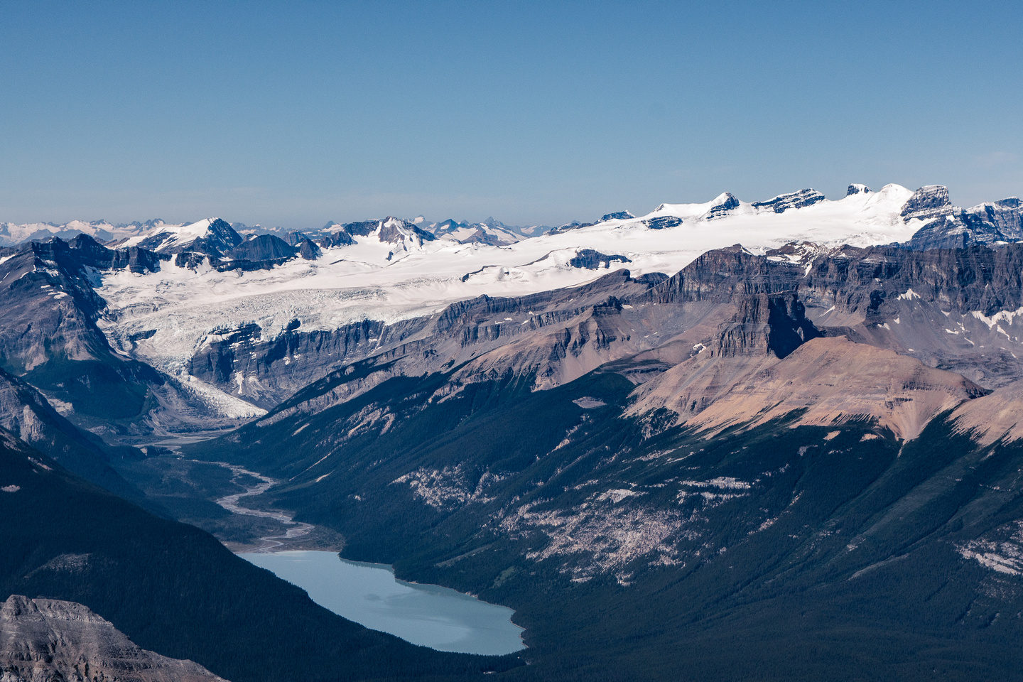 Glacier Lake with the Lyell Icefield rising to the 5 Lyell 11,000ers - Christian, Walter, Ernest, Edward and Rudolph (L to R).