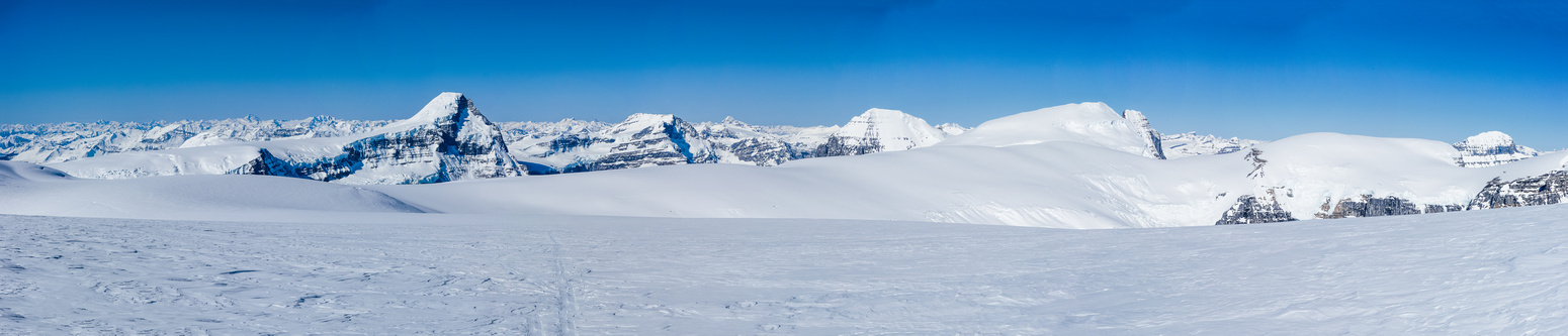 The Columbia Icefield.