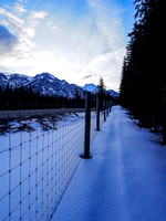 Looking up the old ski tracks along the trans-Canada fence.