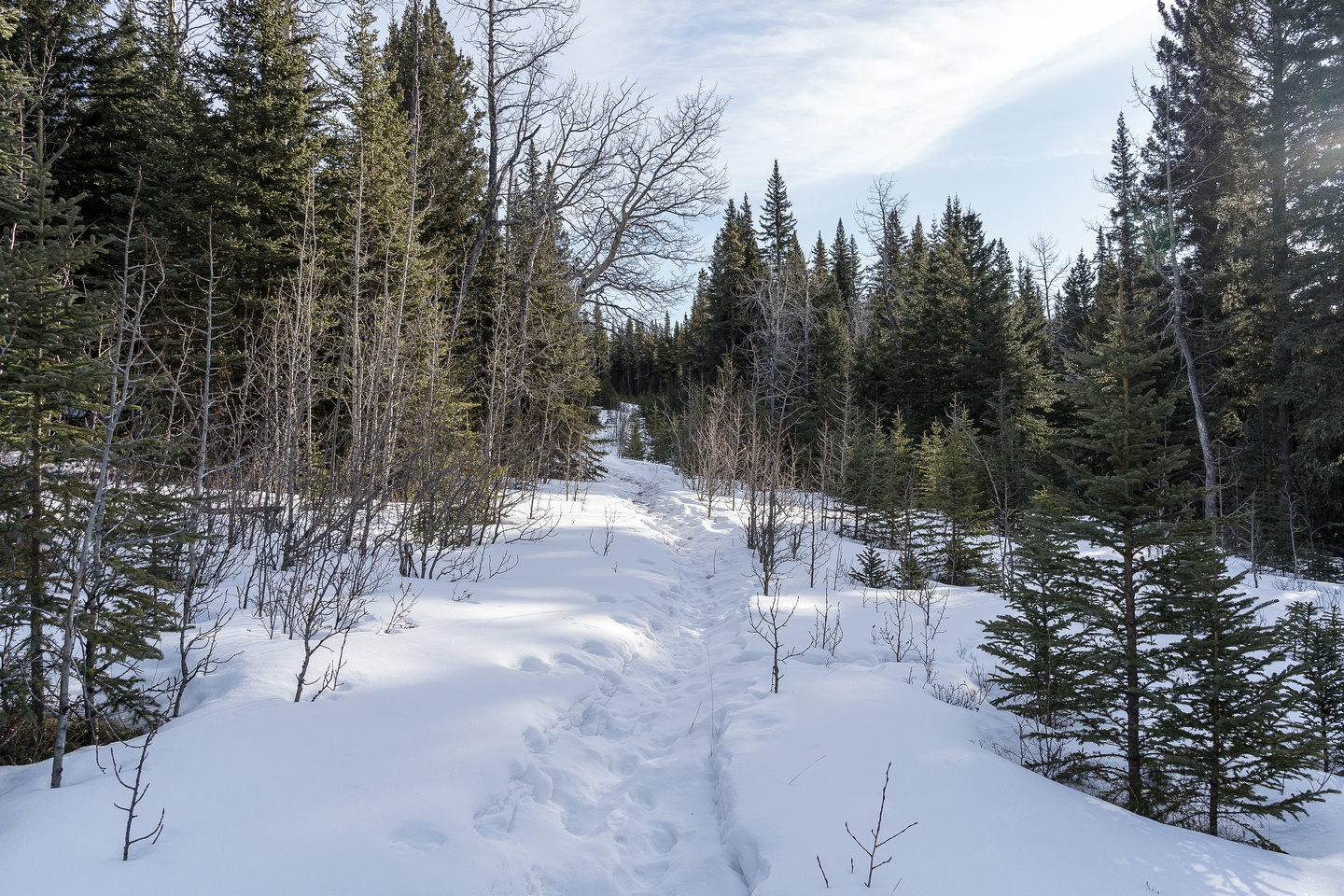 Hiking along an old snowshoe track around the east end of The Hat.