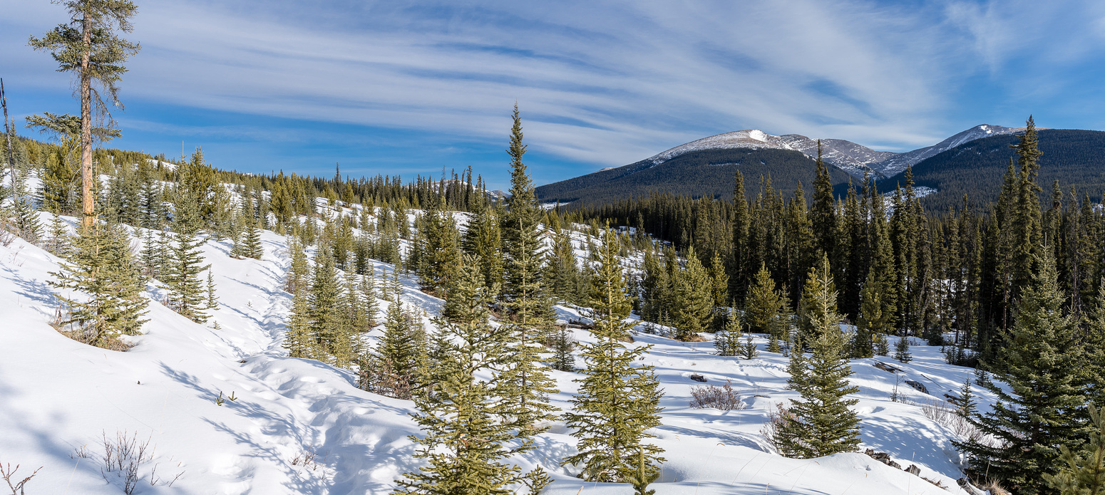 Hiking along an old snowshoe track around the east end of The Hat. Willson visible at right.