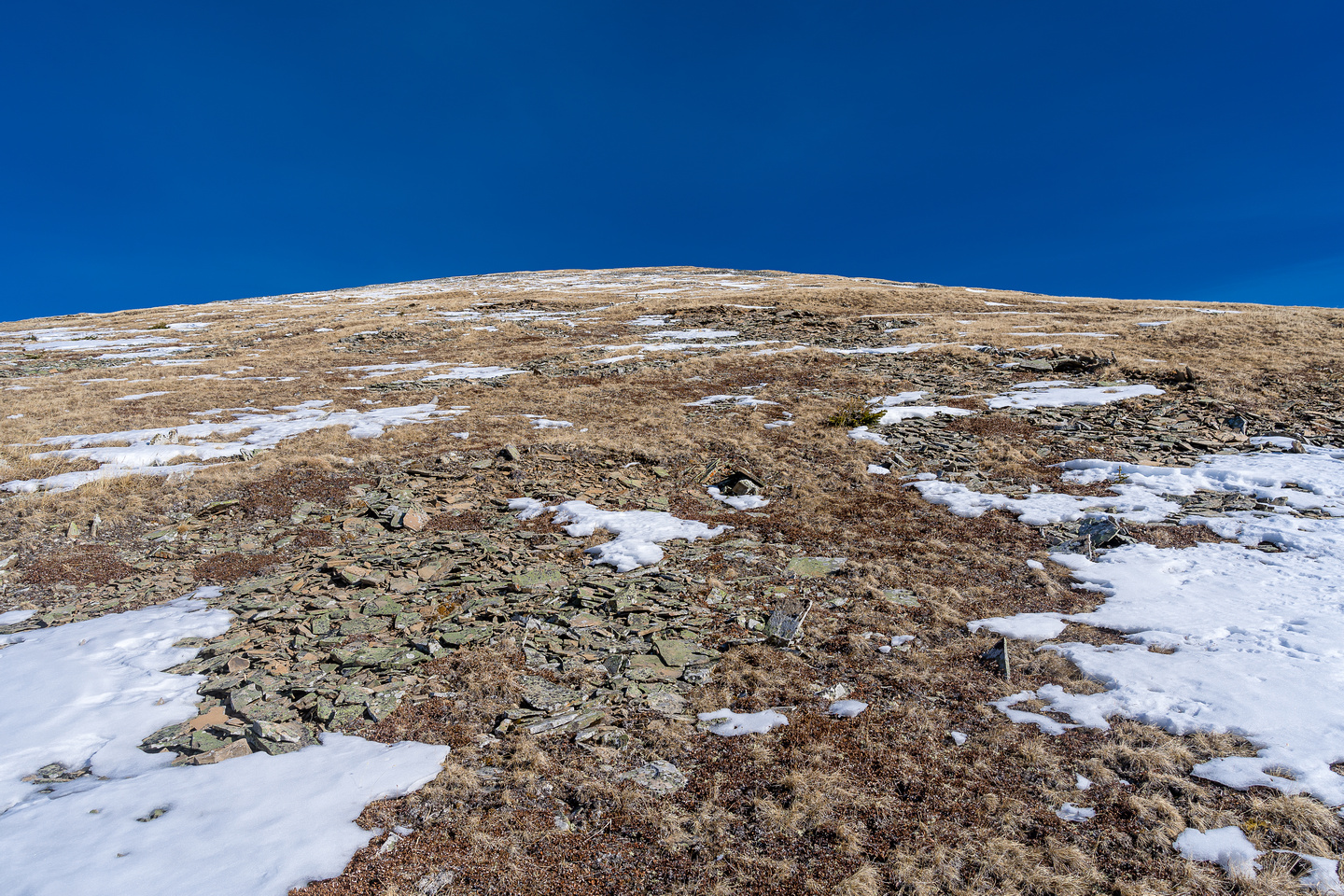 Open slopes to the false summit of Willson.