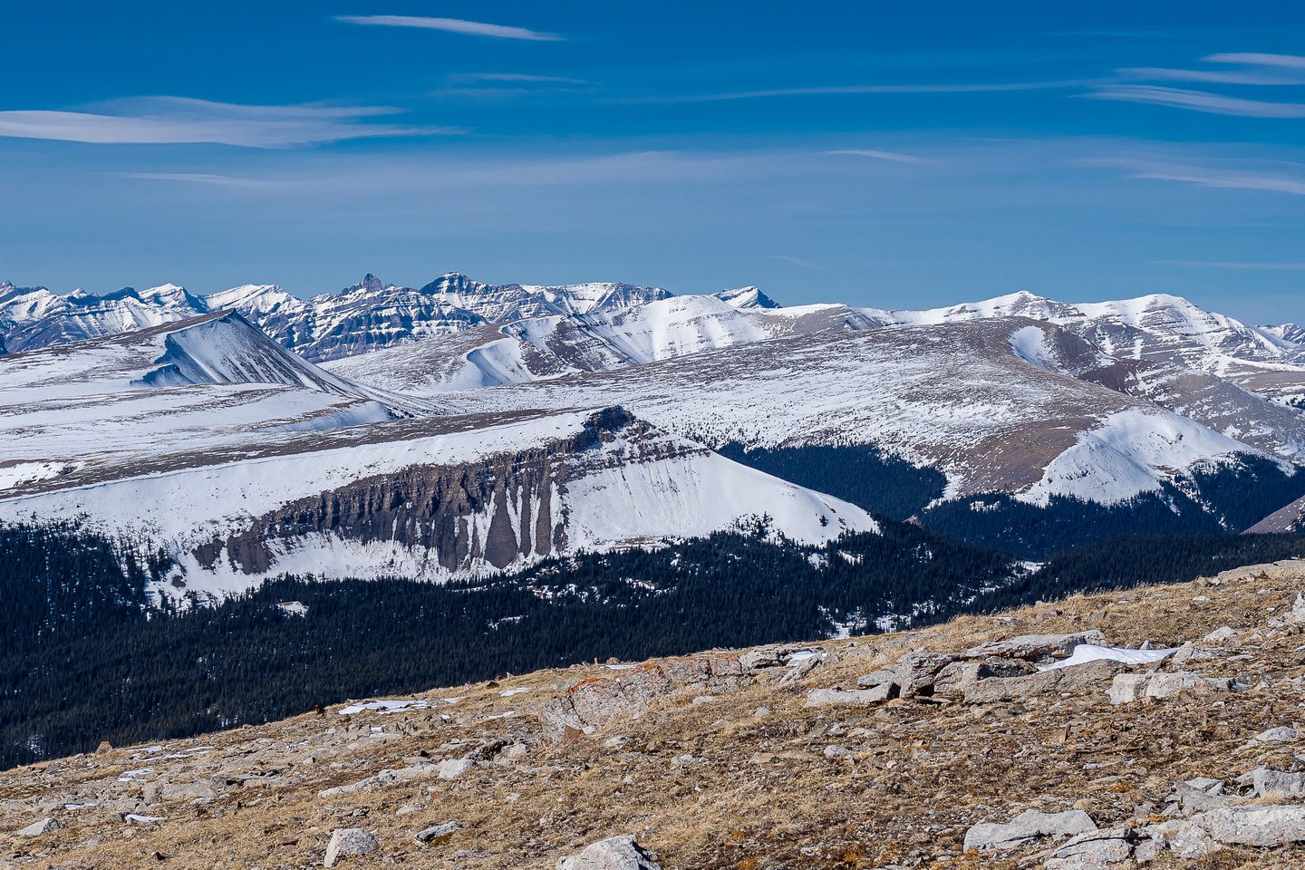 Views over Scalp Peak to a distant Indian Lookout and a striking unnamed peak east of it.