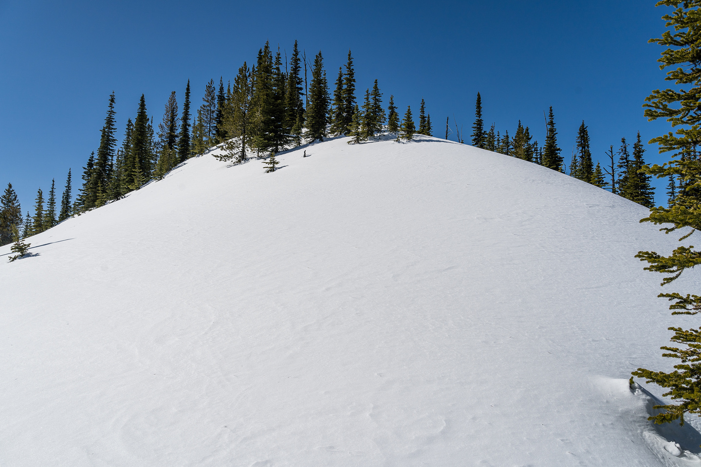 Breaking trail through deep, sticky snow to the summit.
