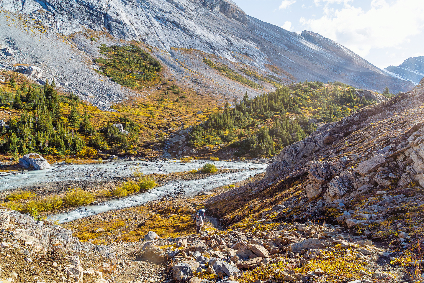 Hiking up to Nigel Pass from the Brazeau River.