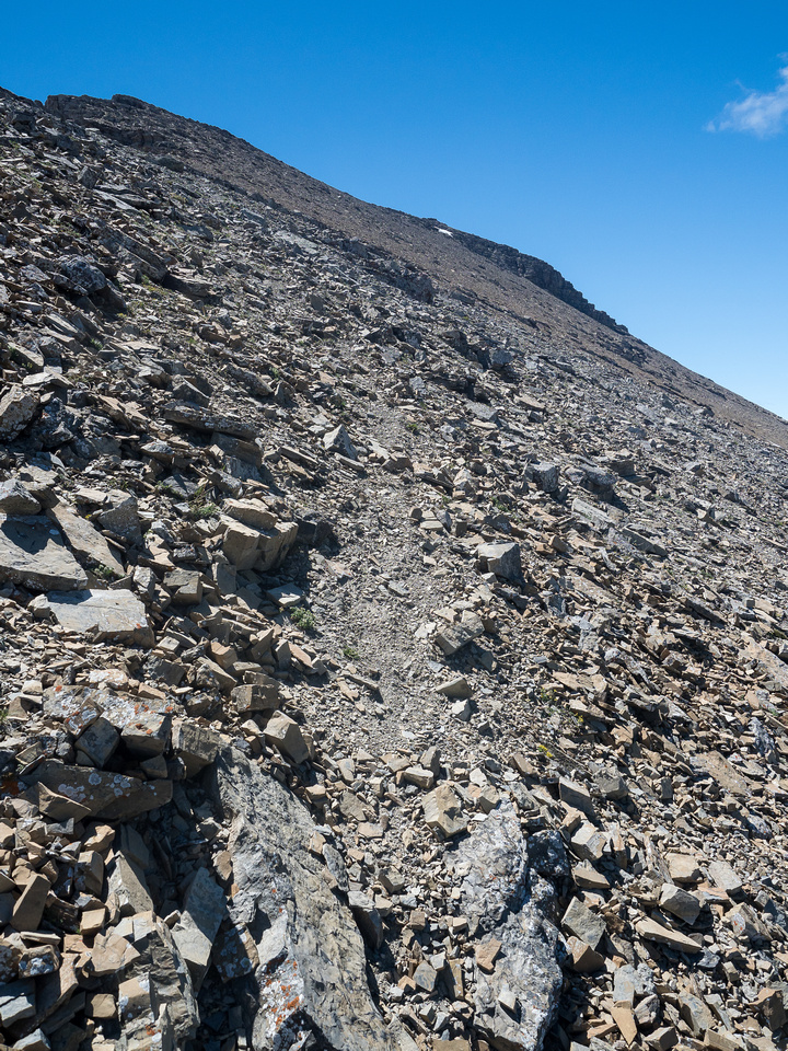 A faint trail in the scree just off the ridge crest makes for quicker travel - especially on descent.