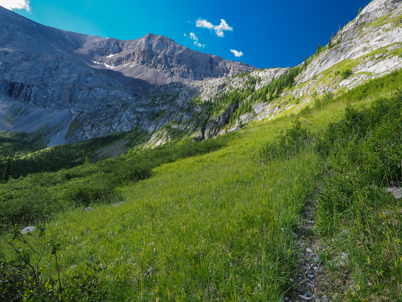 Looking back along the obvious trail to the headwall.