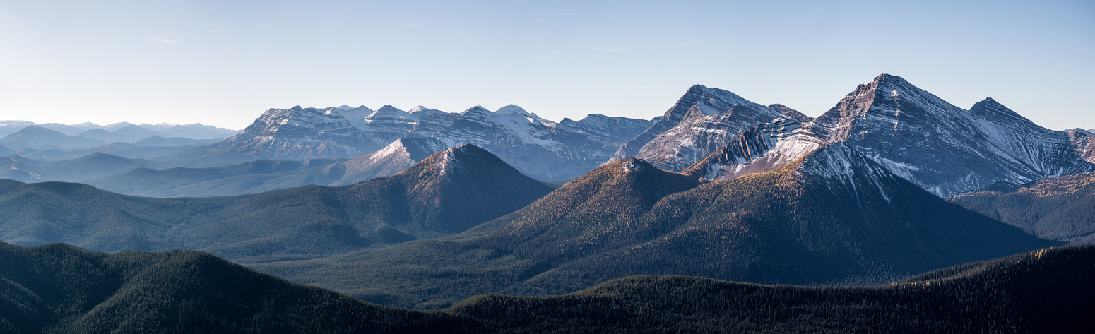 MacLaren, Muir, Hill of the Flowers and McPhail. The two closest peaks at right are Horned Mountain and Mount Bishop.