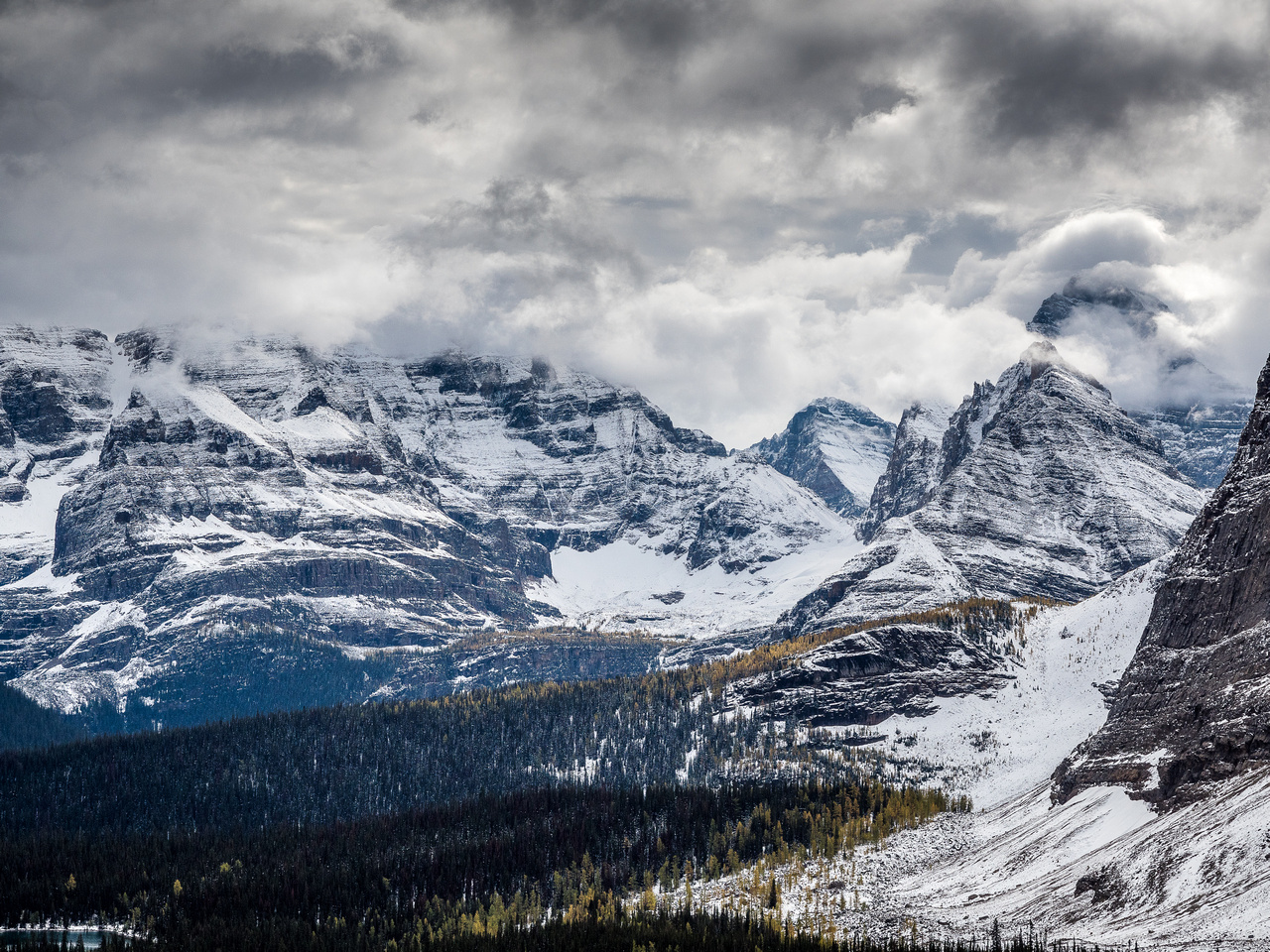 Great views back over the Lake O'Hara region from the trail as it starts to climb more steeply.