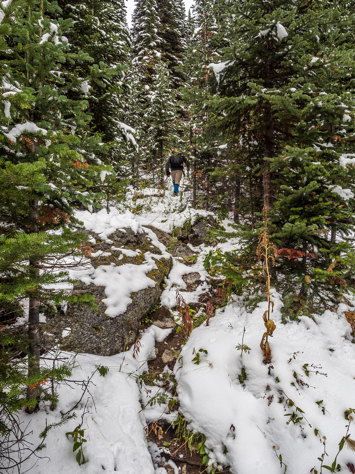 It's getting harder to find the trail under the snow.