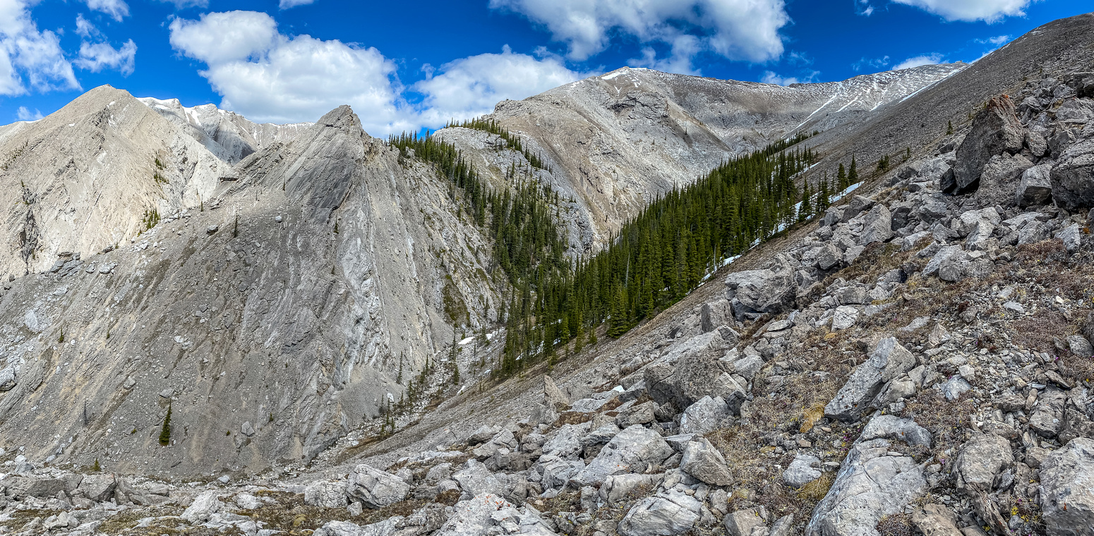 Hiking up the easy west ridge of Falls Lookout.