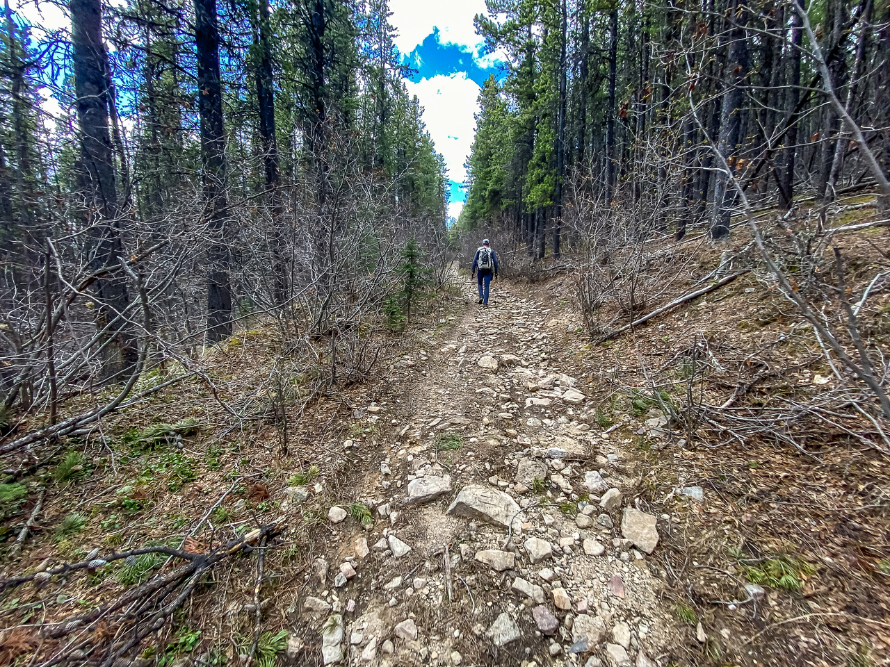 Hiking up the lower OHV track.