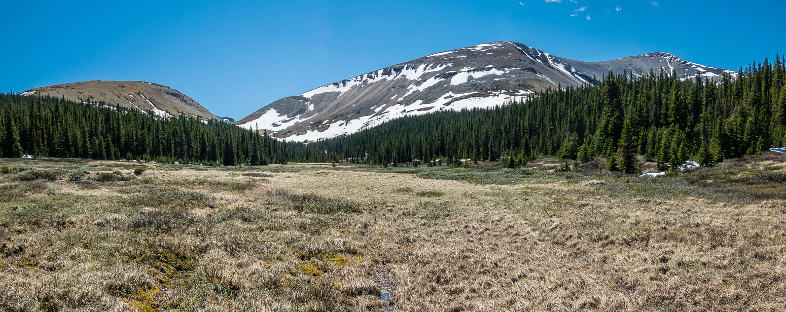 Hiking to the NE end of Mount Bramwell.