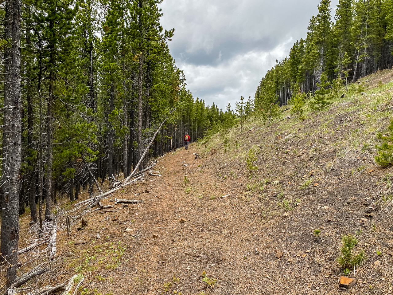 Hiking back along OHV tracks trying to outrun the coming storm.