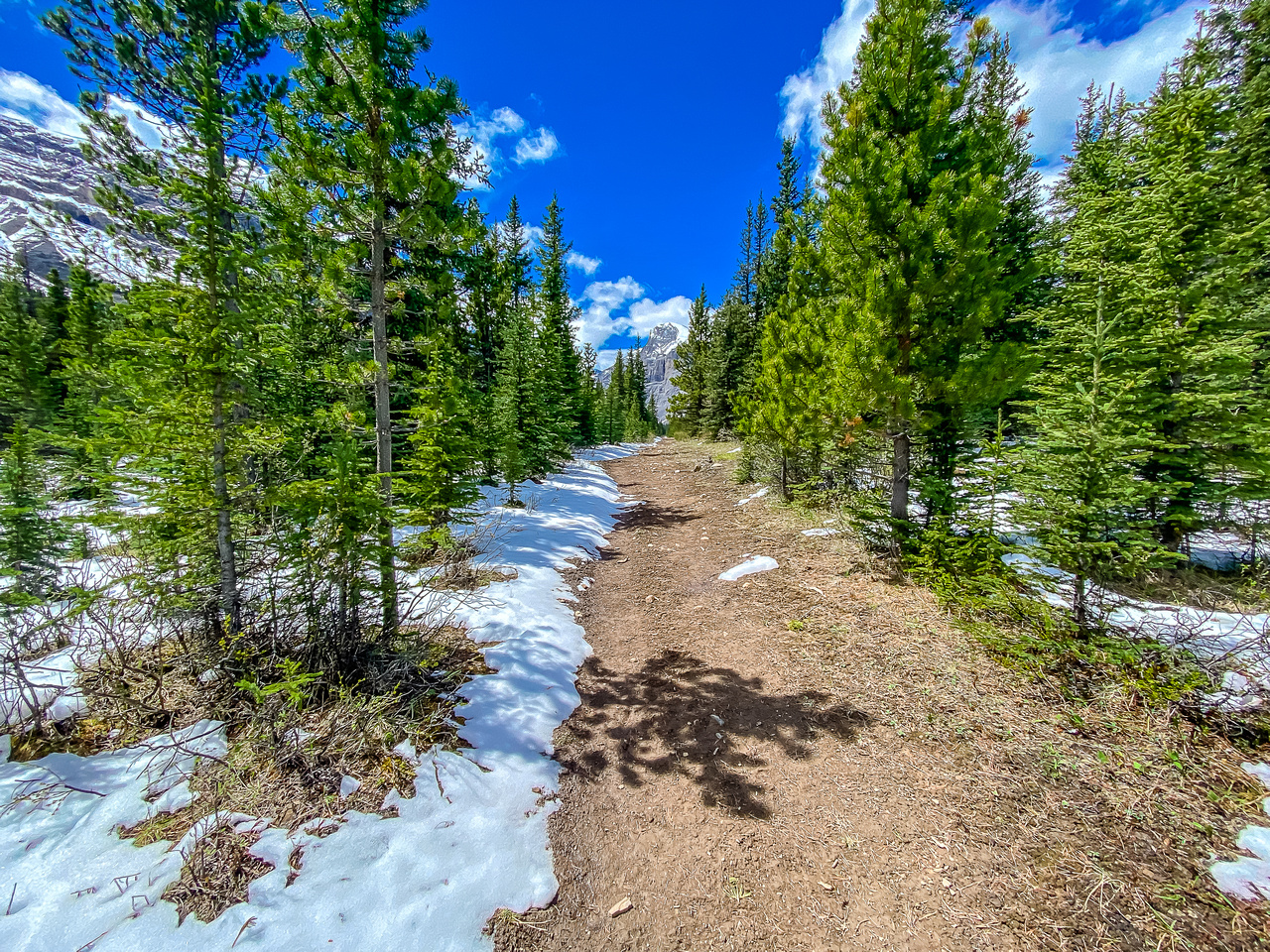 Beautiful trail but could do without the snow!