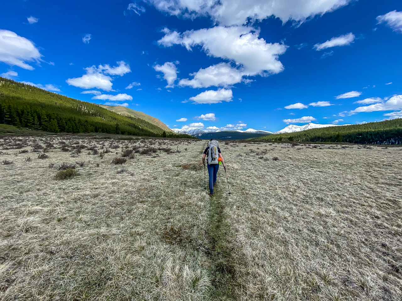 Hiking back through open meadows along the South Ram River Trail.