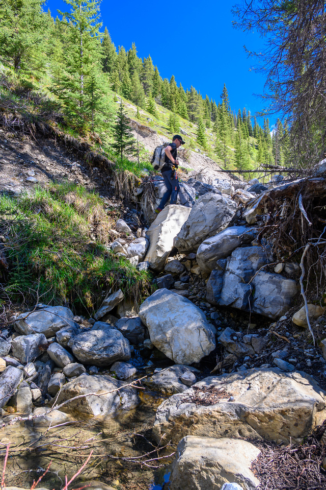 Hiking up a small creek towards Psychic Peak.