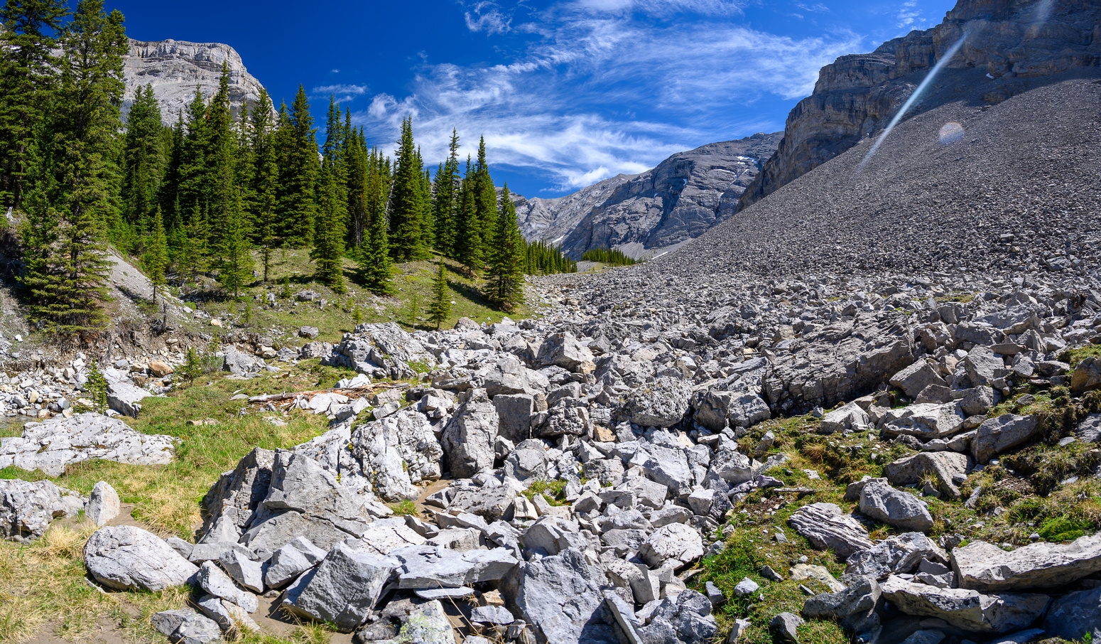 Lovely alpine meadows in the valley south of Psychic Peak.