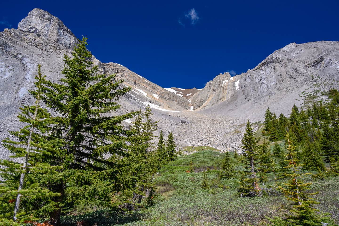 Lovely alpine meadows in the valley south of Psychic Peak, views up towards the peak.