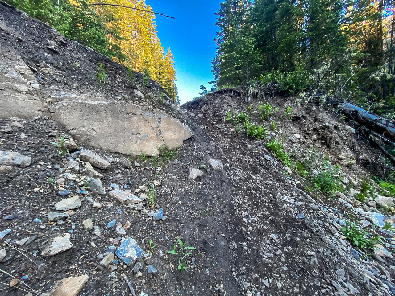 Heavily damaged part of the Sheep River Trail before the end of the first 5.5km.