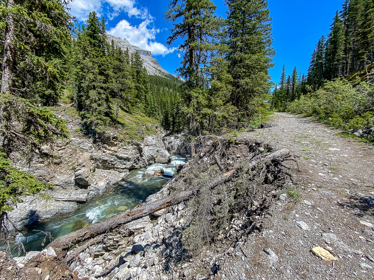 This is the spot most folks leave their bike, ~5.5kms up the Sheep River Trail.