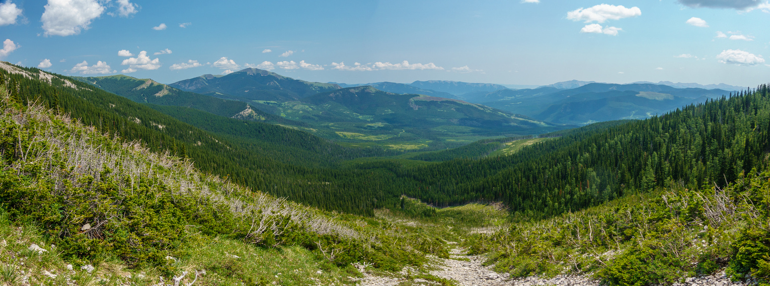 View down the west access gully. Sugarloaf Lookout and Grassy Ridge visible.