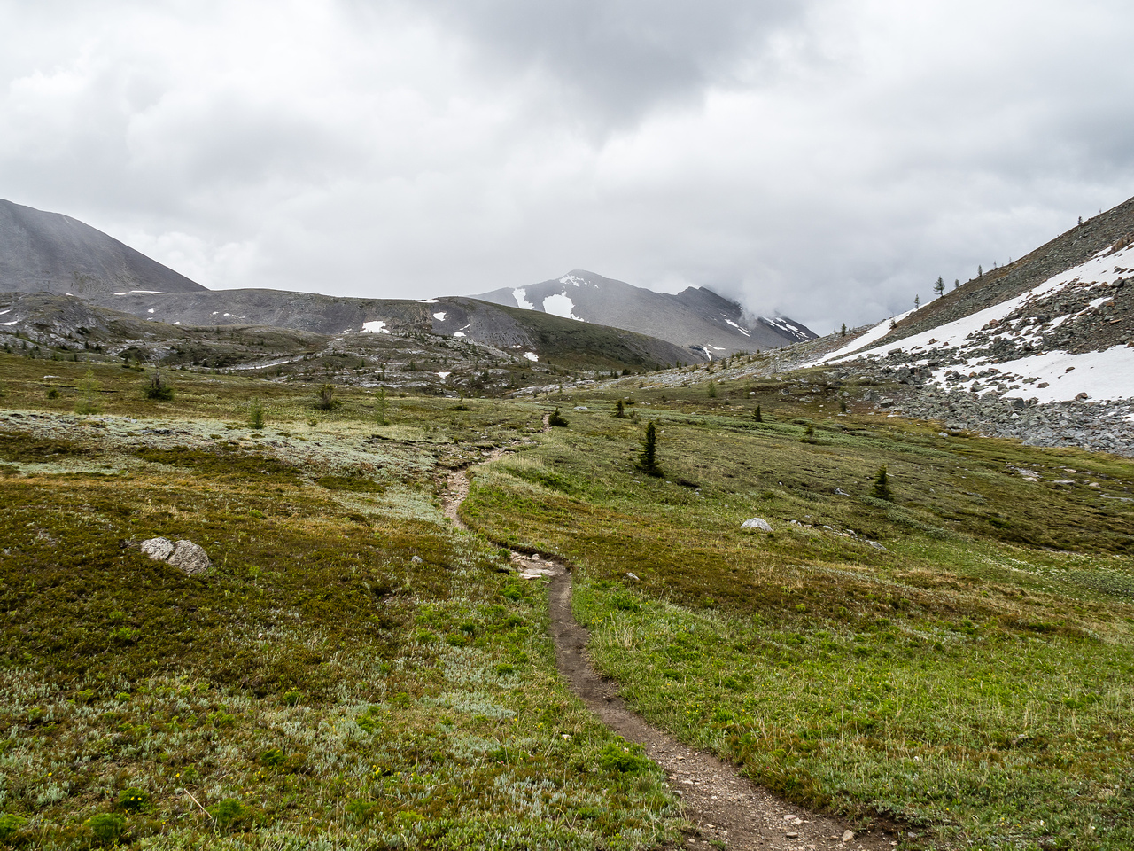 The trail to Citadel Pass.