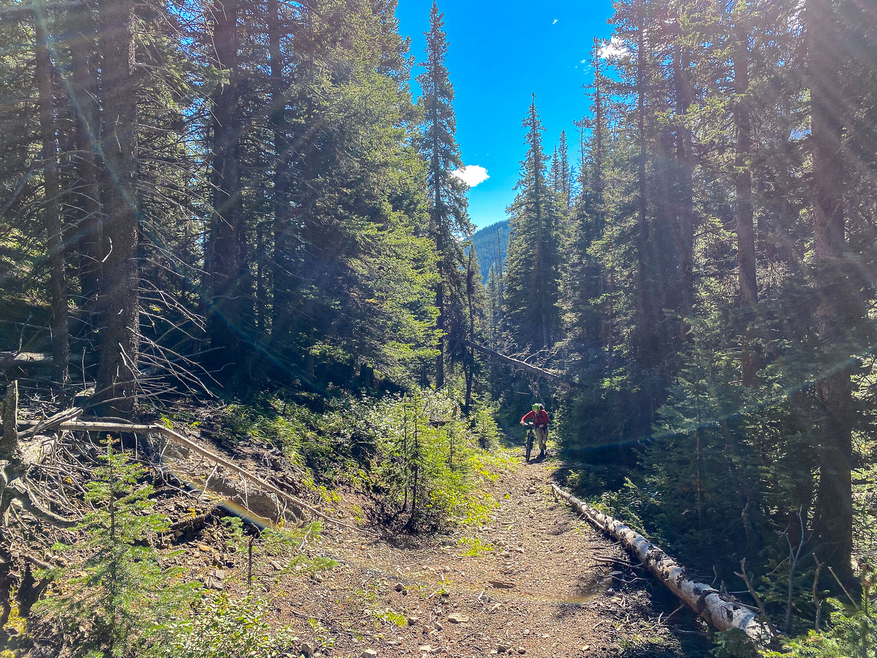 Approaching the Fording Pass area on the Baril Creek trail.