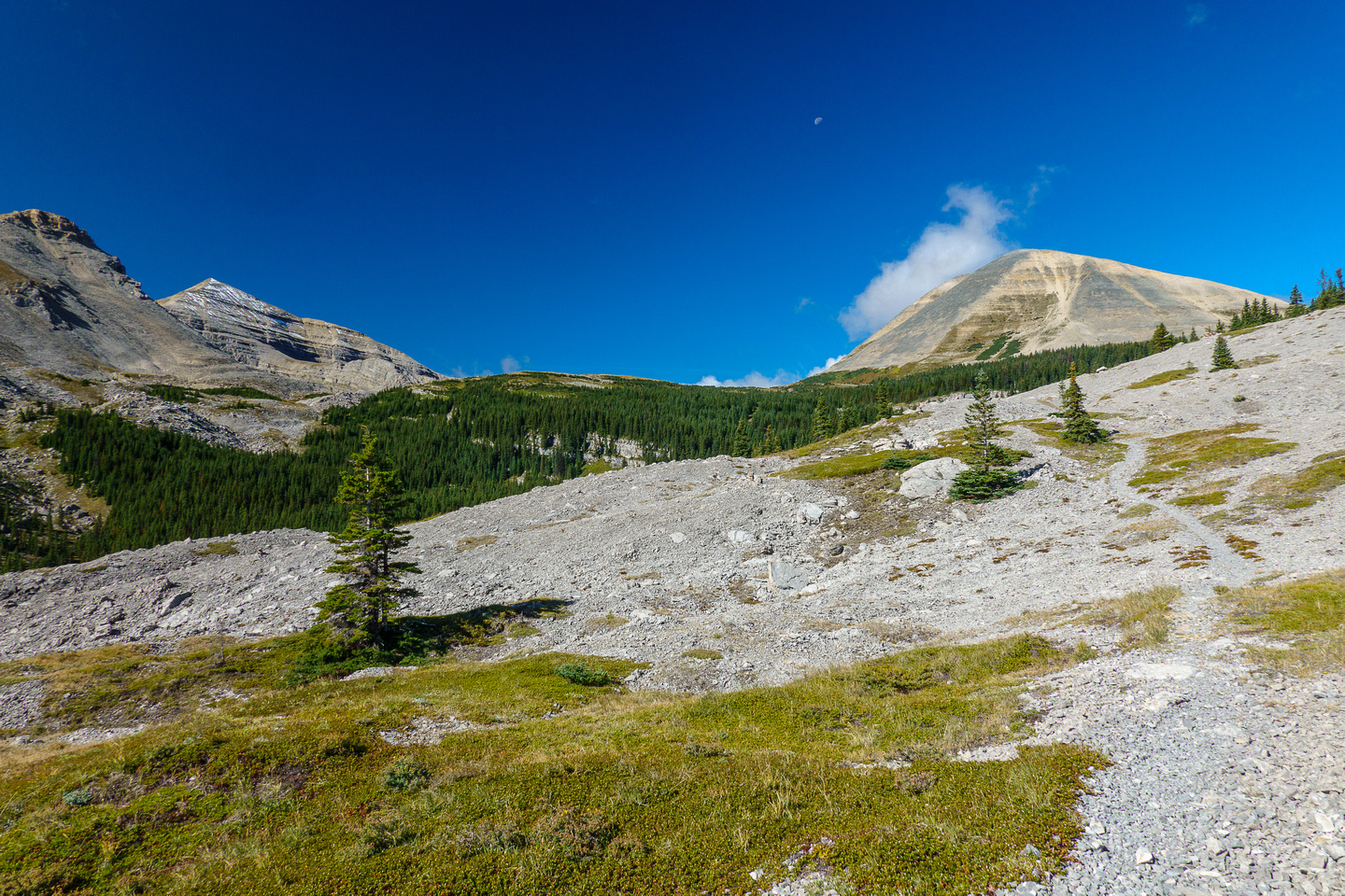 Hiking up to Fording River Pass.