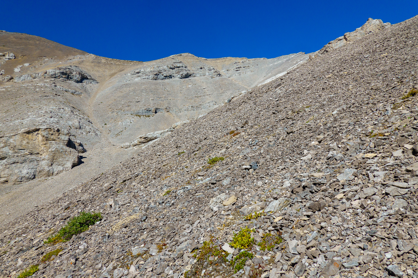 Hiking and side hilling above Sheep Creek to the SW bowl under the summit of Otuskwan.