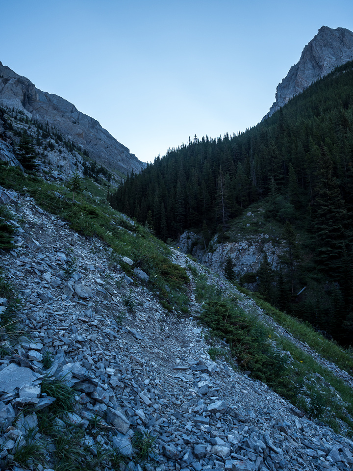 Nice and cool in the early morning as I ascend the steep and direct Grizzly Creek Trail.