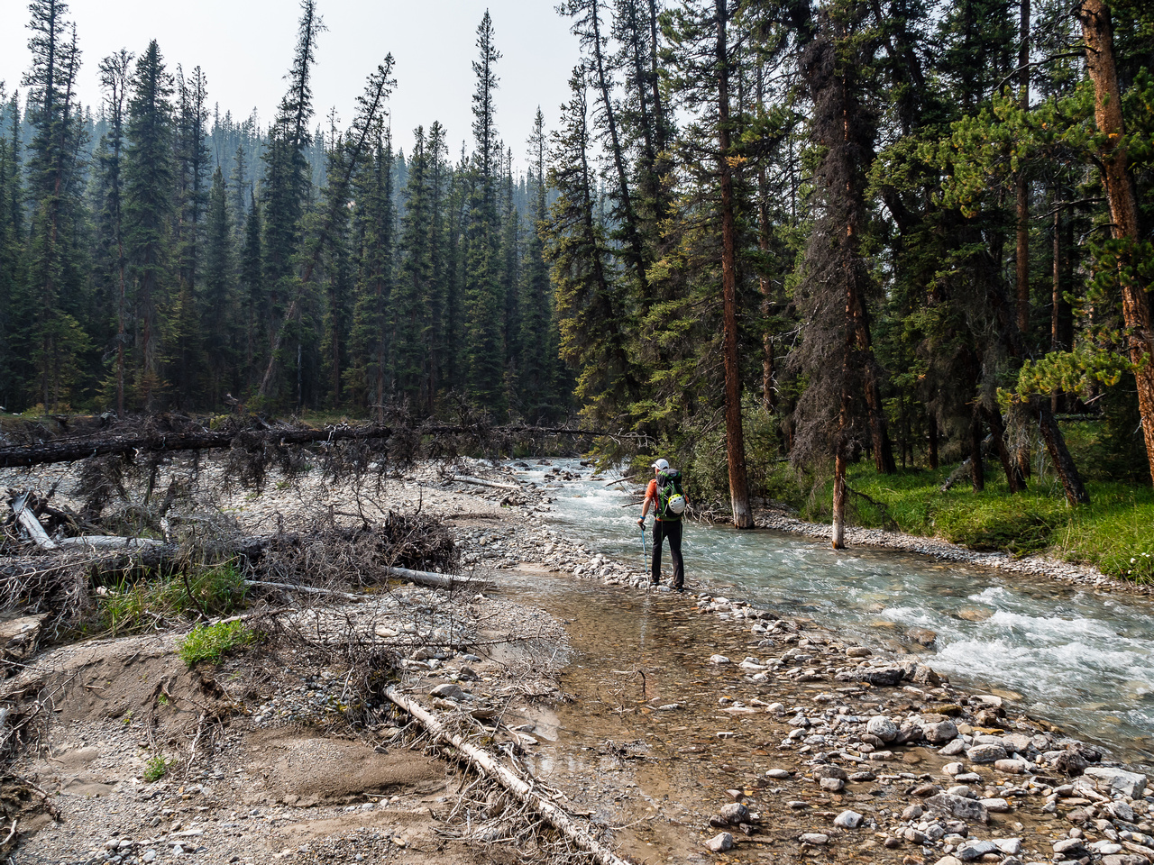 True Banff wilderness as we start up the outflow stream into the McConnell Valley.