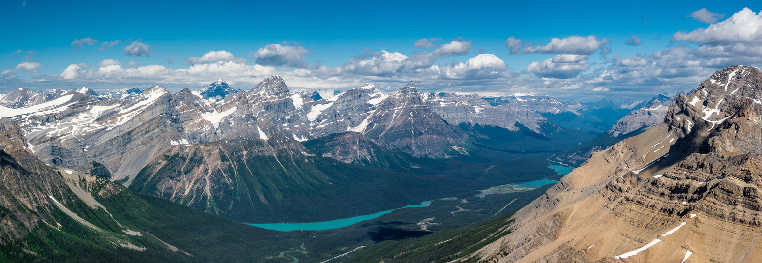 Looking past Mount Weed (R) towards the recognizable forms of Howse, White Pyramid and Chephren across Mistaya and Waterfowl Lakes.