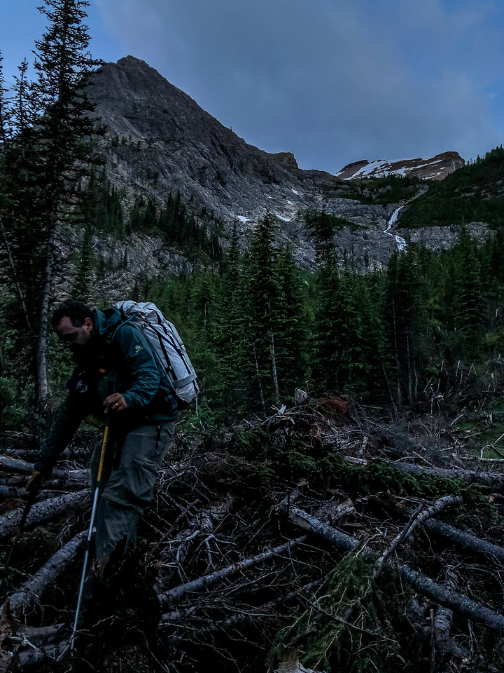 Bushwhacking as darkness falls around us - still about an hour left to get to the cabin. Simpson Peak at upper right here.