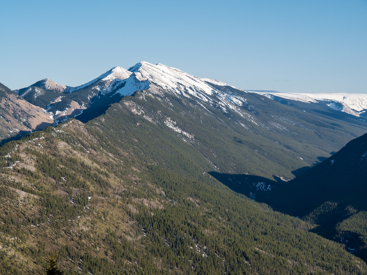 Lovely views up Cataract Creek towards Mount Burke with Plateau Mountain at distant center-right.