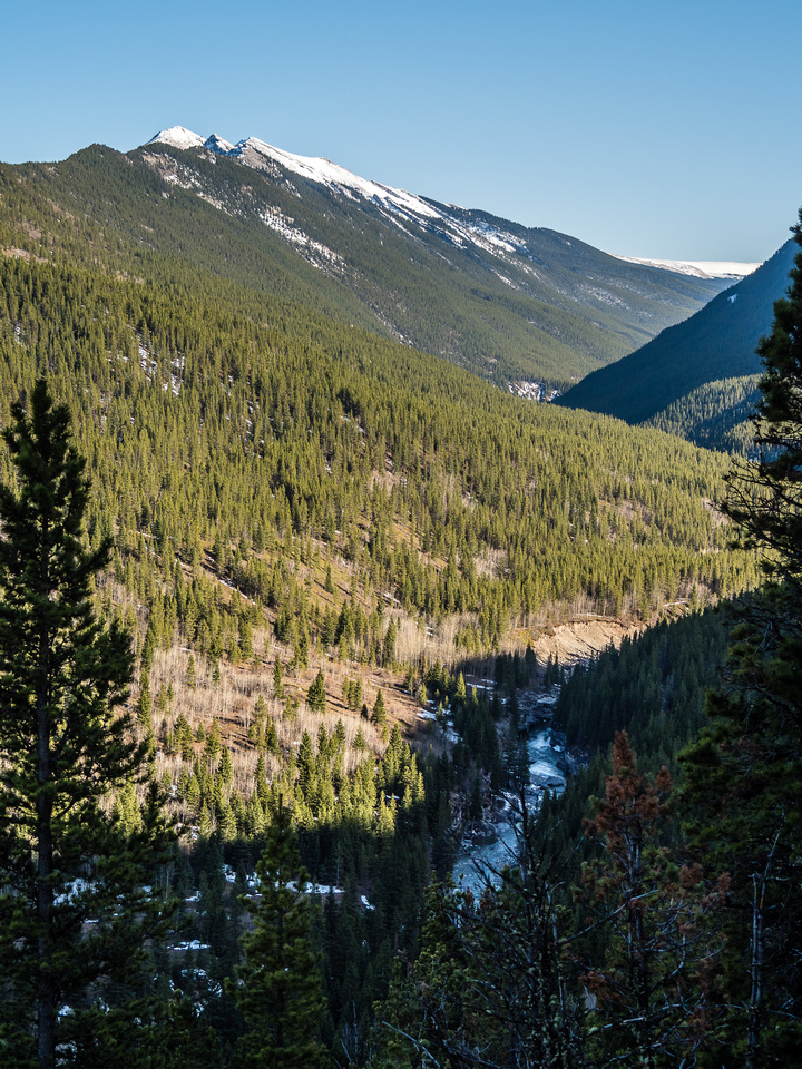 Looking back over Cataract Creek with Mount Burke in the background.