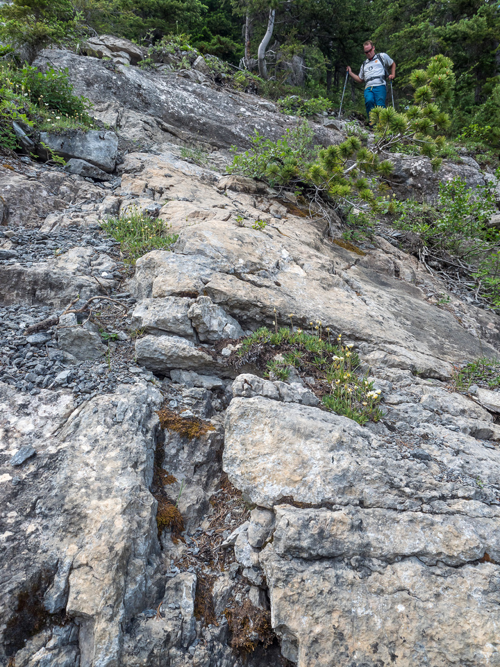 Moderate scrambling down slabs - littered with pebbles and dirt of course.