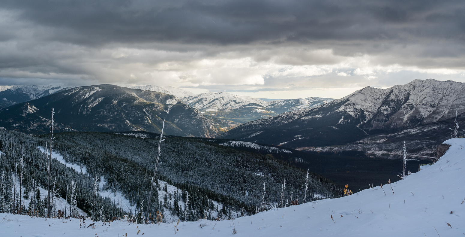 The storm clouds are building in this nice view towards the front ranges - Turtle Mountain at right and Bluff Mountain at left.