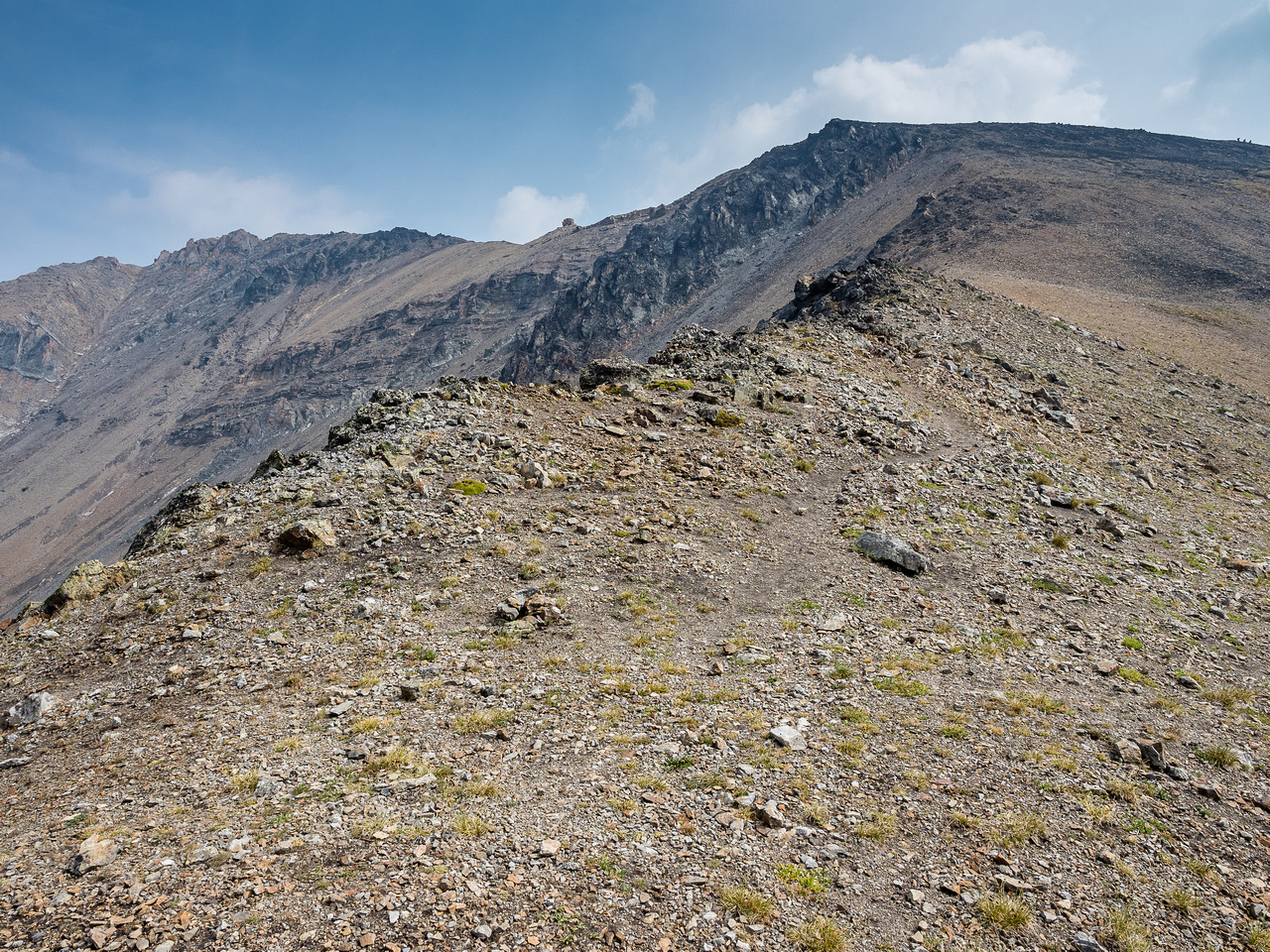 Looking up the easy west slopes of Grizzly Ridge. The summit is at upper left.